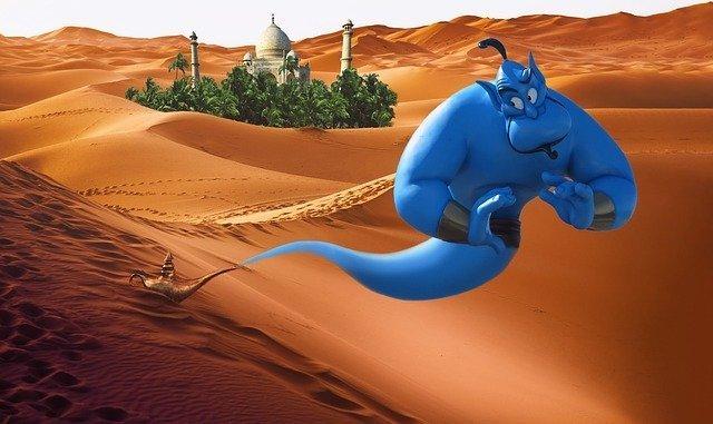 Genie Wilderness Aladin Alladin